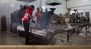 At our factory you can learn about Bali coffee and see how it's made.
